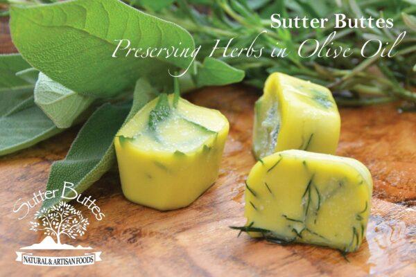 preserving herbs in olive oil