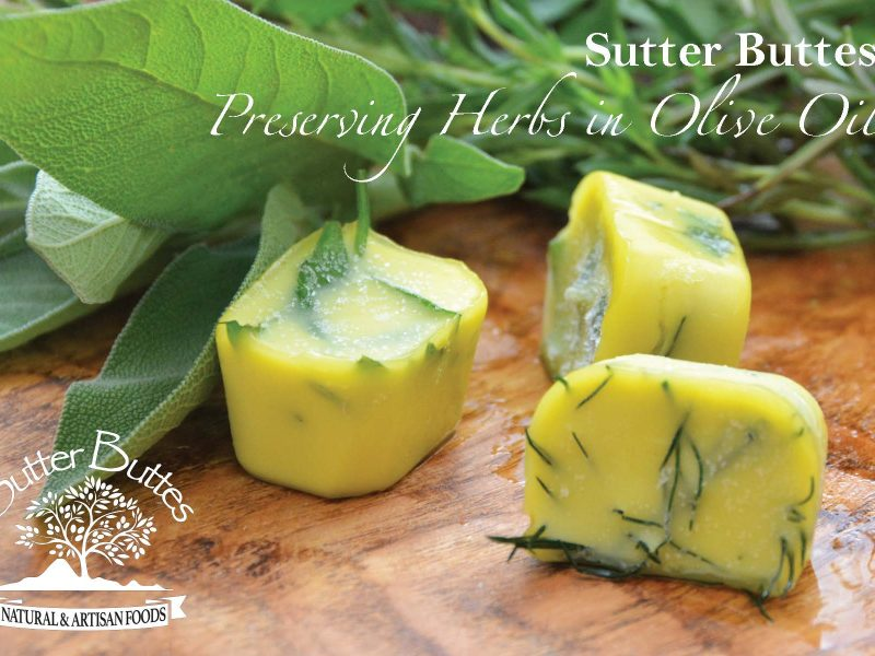 Preserving Herbs In Olive Oil